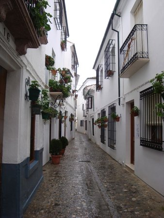 """La Posada Real: This is the """"street"""" that leads to the hotel--that's it on the left with the two planters"""