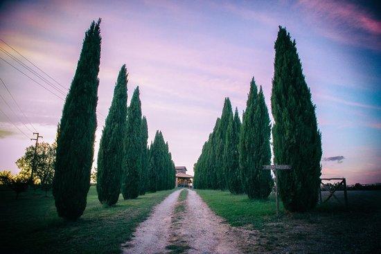 Agriturismo Poggio Primavera