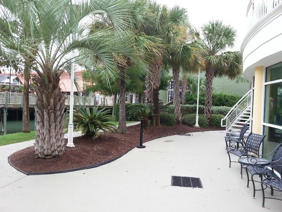 Hampton Inn Myrtle Beach - Broadway At the Beach: Grounds