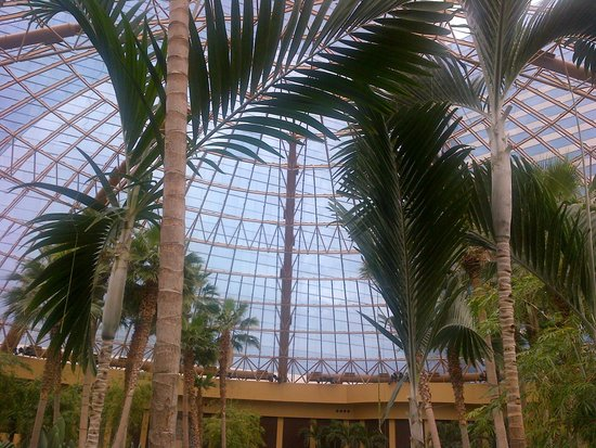 Harrah's Resort Atlantic City: Under the Dome