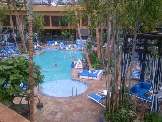 Harrah's Resort Atlantic City: The Pool