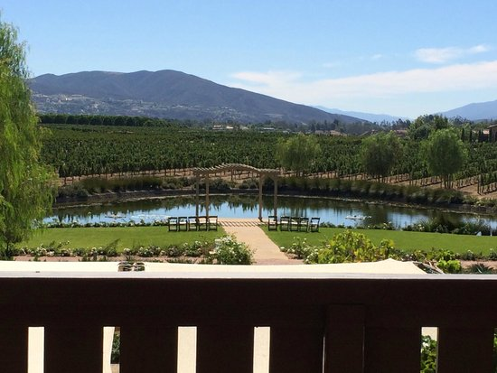 Ponte Vineyard Inn : Mesmerized by this view we took from our room balcony...so beautiful...