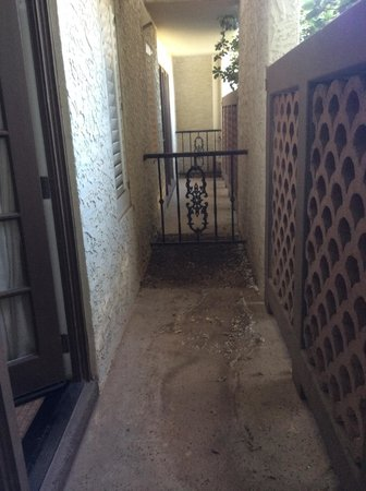 Arizona Grand Resort & Spa: Gross Patio area of boardroom suite