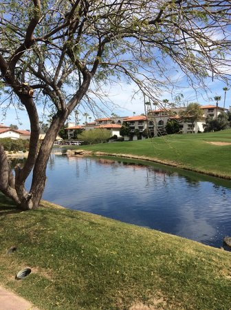 Arizona Grand Resort & Spa: Lots of water features