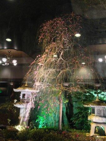 ANA Crowne Plaza Kyoto: 眺め