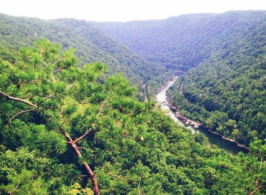 New River Gorge Bridge: View from look out