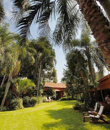 San Martin Hotel & Resort: Jardines