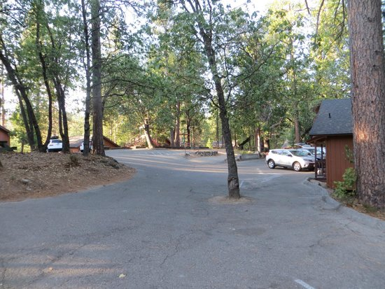 The Pines Resort: parking and cabin area