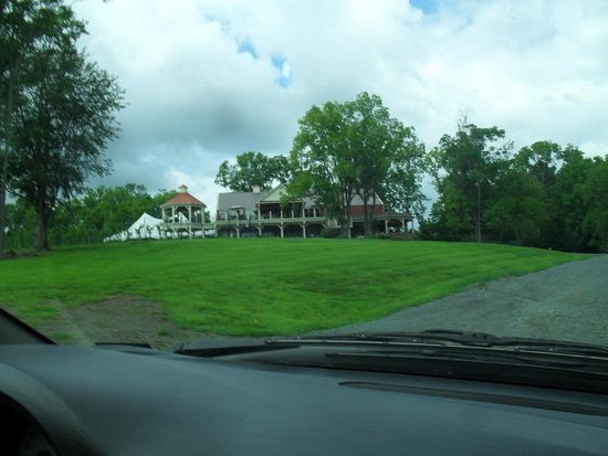 Cana Vineyards and Winery: view from driving up