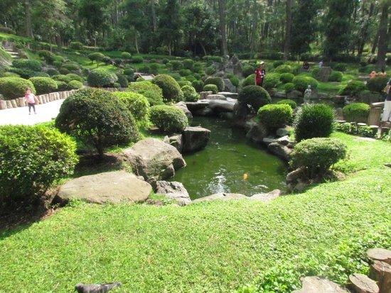 Jardin japones picture of bosque colomos guadalajara for Jardin japones