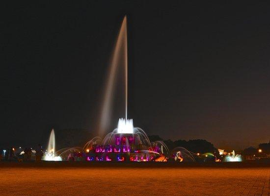 Buckingham Fountain: Fountain at night