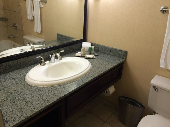 Hilton New Orleans Airport : Bathroom sink