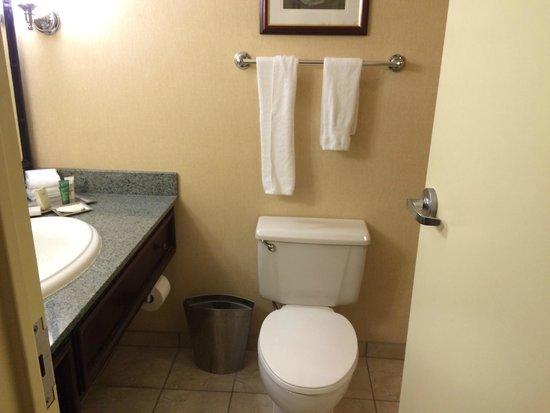 Hilton New Orleans Airport: bathroom