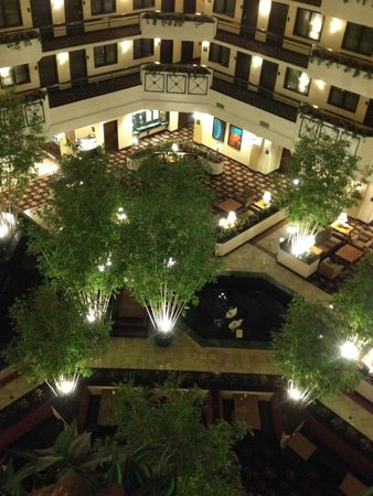 Embassy Suites by Hilton Dulles Airport: LOBBY