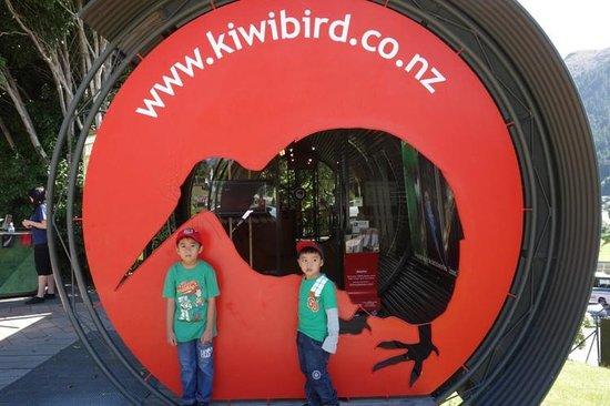 Kiddos di Kiwi Birdlife Park