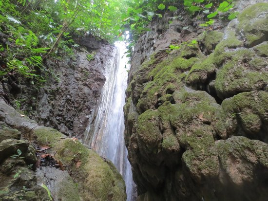 Bosque del Cabo Rainforest Lodge: Waterfall off the Pacific Trail