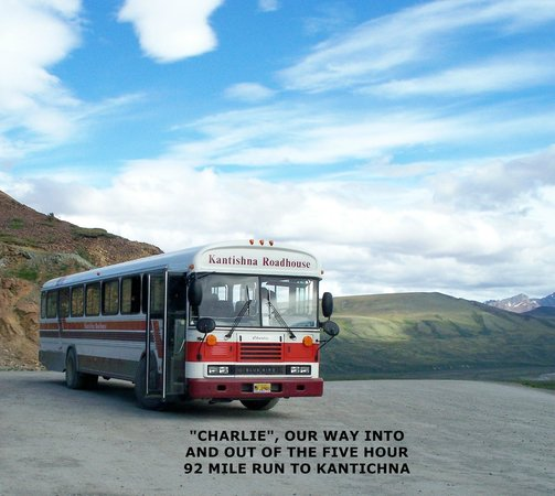 Kantishna Roadhouse: Charlie, our bus  on the scenic rides