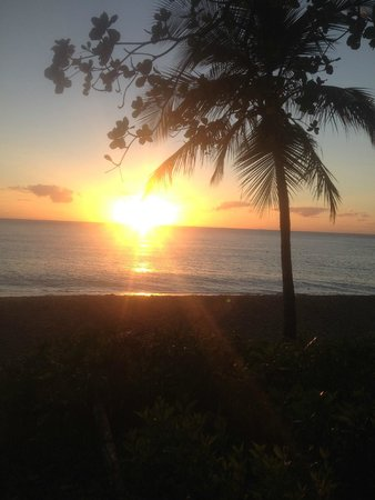 Bellevue at Trinity Beach: Sunrise at about 7am just prior to my swim