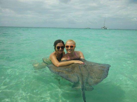 Acquarius Sea Tours: Stingray City