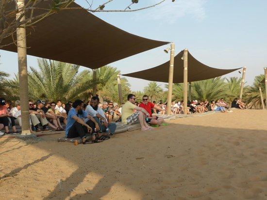Arabian Adventures: Watching the falconry display