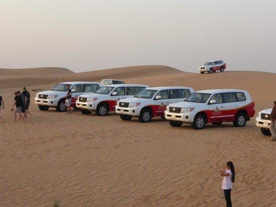 Arabian Adventures: 4WDs after dune bashing