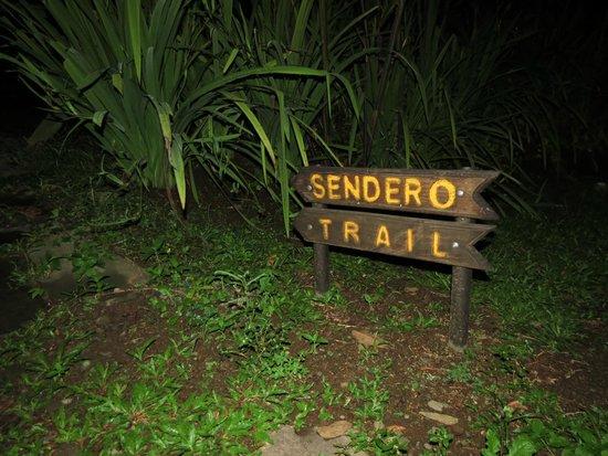 Casa Luna Hotel & Spa: trail