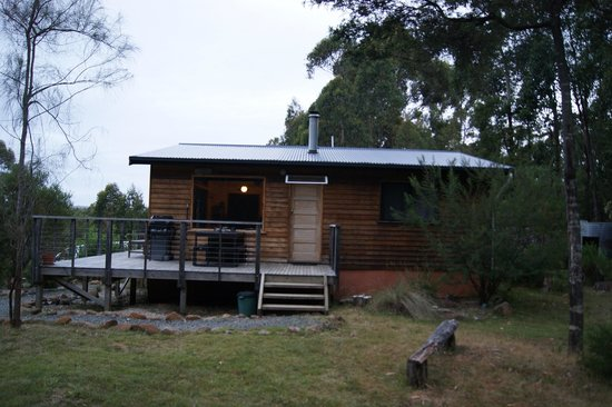 Southern Forest Accommodation : Outside view