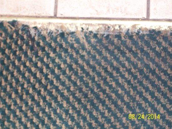 Alcoa Inn: edge of carpet