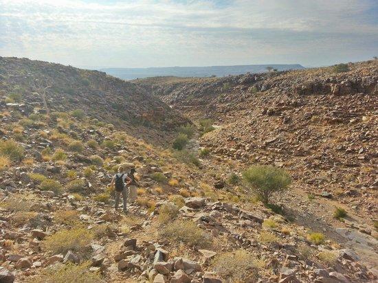 Fish River Lodge : Descente au fond du canyon avec un guide du lodge à la journée