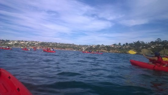 La Jolla Caves : a serene day for kayaking