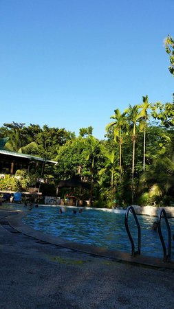 Sepilok Jungle Resort: Zwembad