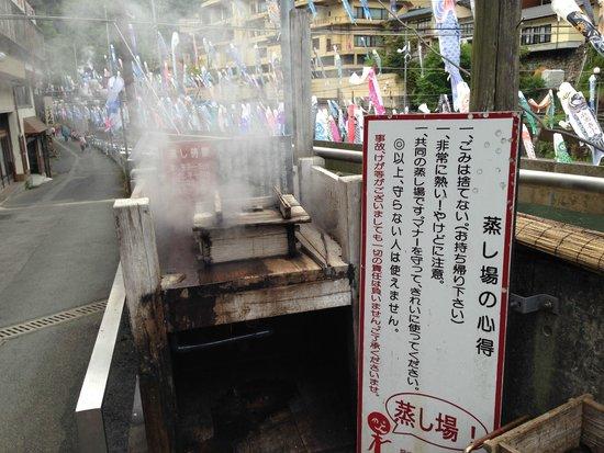 Tsuetate Onsen: 蒸し場