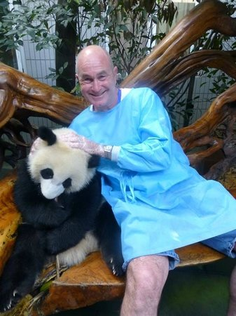 Giant Panda Breeding Research Base (Xiongmao Jidi): Cuddles :)  (the hospital gown is for the panda's protection not mine!)