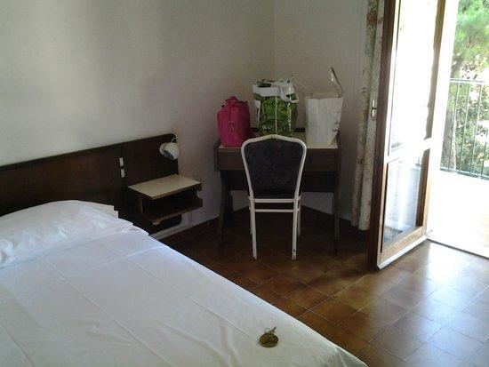 Hotel Eden Park: Scrivania