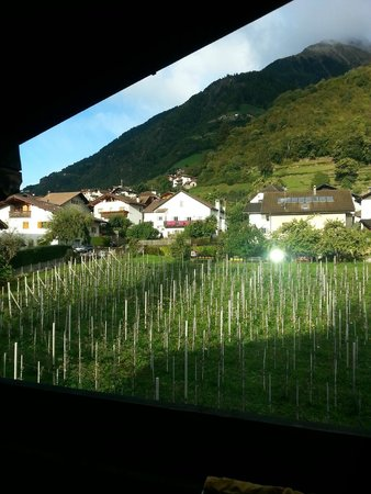 Hotel Taufenbrunn: terrace view over orchard to mountains