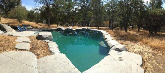 One Light B&B: Beautiful artisanal pool