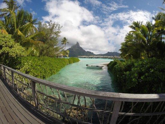 InterContinental Bora Bora Resort & Thalasso Spa: View from Hotel Grounds