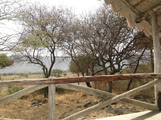 Ol Mesera Tented Camp: View from our tent