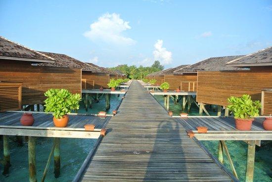 Vilamendhoo Island Resort & Spa: วิลล่า