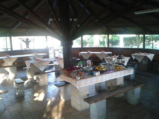Azienda Agrituristica Le Cascine: Buffet estivo prima colazione