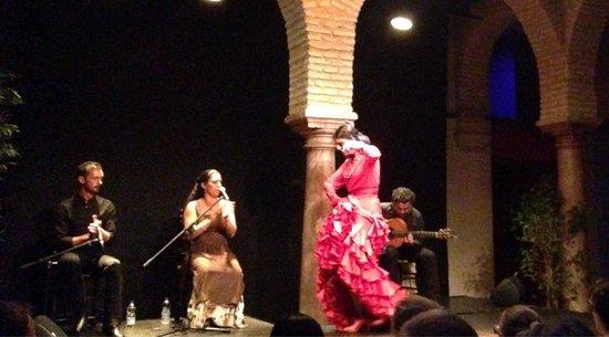 Museo del Baile Flamenco: Passionate dancing, soulful music.