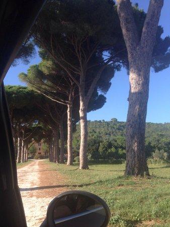 Entrata Villa Boldrini