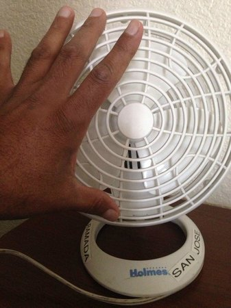 Pacific Motor Inn: fan size of a palm
