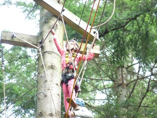 Zip World Fforest: Stretch