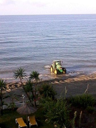 Santa Rosa Hotel : limpieza de (playa)