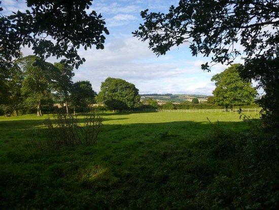 Sniperley Hall: Views
