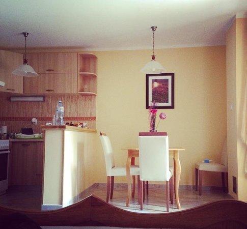 Hotel Marija 2: Room #3 kitchen/dining