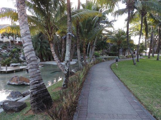 Canonnier Beachcomber Golf Resort & Spa : From bar