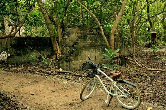 Shangri-La's Villingili Resort and Spa Maldives: British WW2 relic when the maldives was used as a naval base