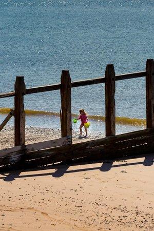 Langstone Cliff Hotel: The Beach at Dawlish Warren